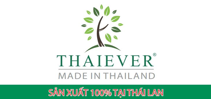 thai-ever-logo